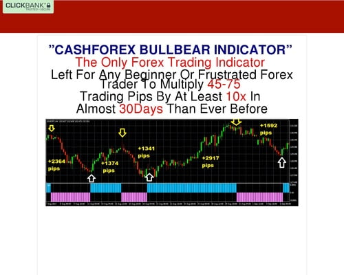 CashForex Non-Repaint Forex Trading System