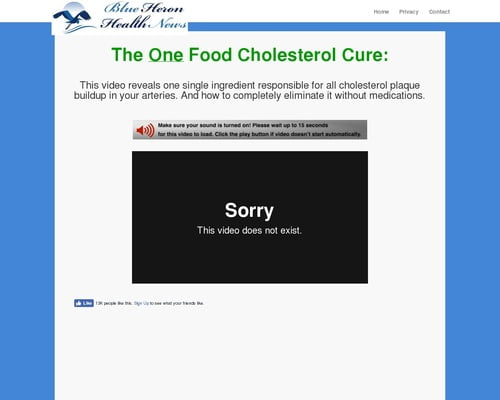 The Oxidized Cholesterol Strategy vsl cb | Blue Heron Health News